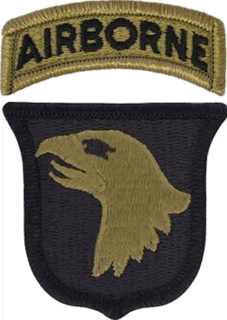 101st Airborne Division air assault division of the United States Army