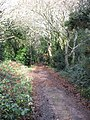 Path back to the road - geograph.org.uk - 1074705.jpg