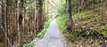 Path between Biberwier and Lermoos 2.jpg