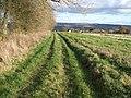 Path towards Donnington - geograph.org.uk - 1608926.jpg