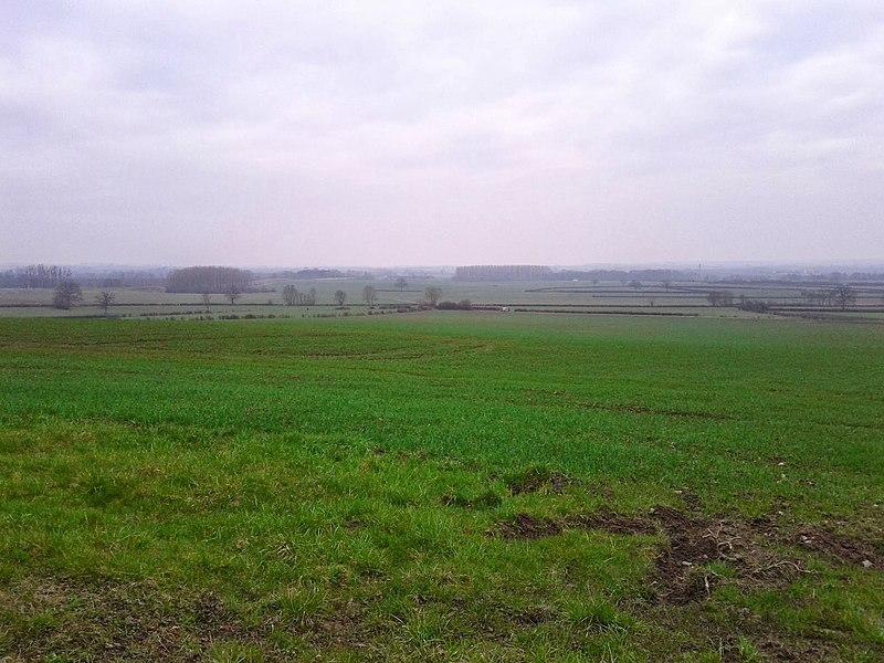 Paysage vers Vignes (89)