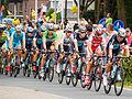 Peloton - Tour de France 2015 - Haastrecht - Zuid-Holland - Pays-Bas (19445055491).jpg