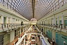 Petrovsky Passage interior 06-2015.jpg
