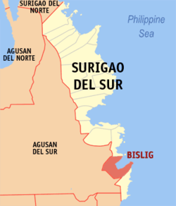 Map of Surigao del Sur with Bislig City highlighted