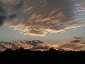Photo of the Week - Friends of Great Swamp Sunset Walk (5099664990).jpg