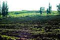 PikiWiki Israel 29264 plowed Field.jpg