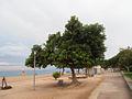 Pineda de Mar (View on the beach).jpg
