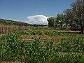 Pipe Springs National Monument, Arizona (35) (3733777793).jpg
