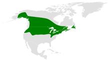 Poecile atricapillus map.png distribuição