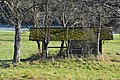 Poertschach Gaisrueckenstrasse Am Kate Streuobstwiese Doerrkasten 10122014 735.jpg