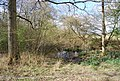 Pond by the path, Sliders - geograph.org.uk - 1261848.jpg