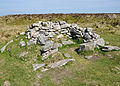 Possible hut circle on Shapley Common.jpg
