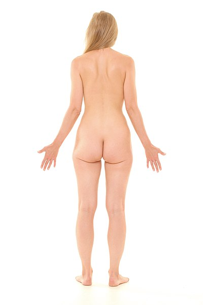 File:Posterior view of human female, retouched.jpg