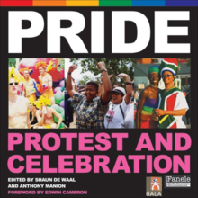 Protest and Celebration is a history of South Africa's gay pride marches and parades over the last 16 years.