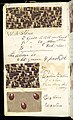 Printer's Sample Book, No. 19 Wood Colors Nov. 1882, 1882 (CH 18575281-48).jpg