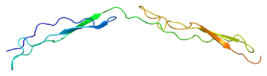 Protein THBS1 PDB 1lsl.png