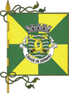 Flag of Espinho