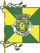 Bandeira de Espinho