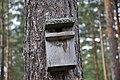 Putnu būris, Vecumnieku pagasts, Vecumnieku novads, Latvia - panoramio.jpg