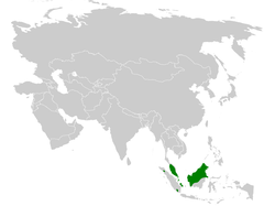Pycnonotus zeylanicus distribution map.png