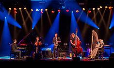 Quadro Nuevo - Leverkusener Jazztage 2015-3186.jpg