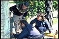 Rökstenen - KMB - 16000300014284.jpg
