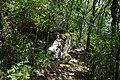 RNR Bois des Roches-2 (36).jpg