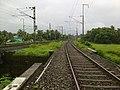 Railway line from guruvayoor thrissur - panoramio.jpg