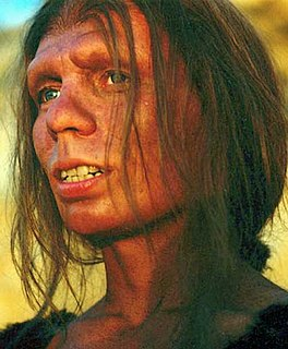 genetic study of Neanderthal DNA