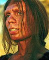 Reconstruction of Neanderthal woman.jpg