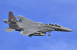 A F-15E Strike Eagle of the 391st Fighter Squadron based at Mountain Home AFB.