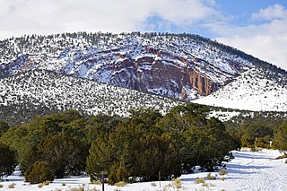 Red Mountain (Coconino County, Arizona) volcano in Arizona, USA