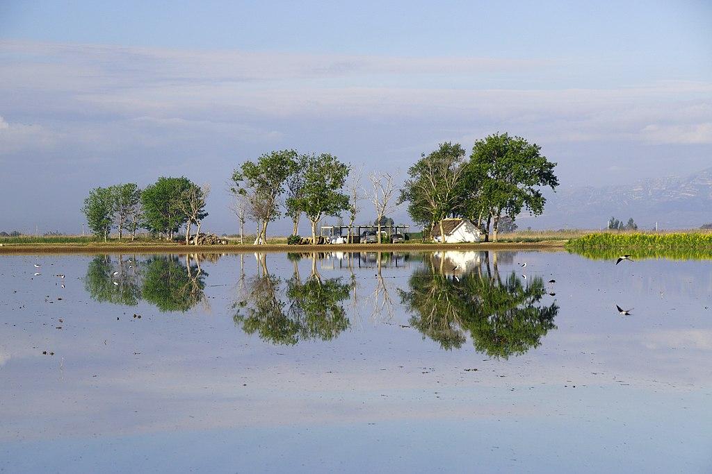 Reflejos en el Delta del Ebro