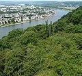 Rhein - panoramio (4).jpg