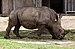 Rinoceronte (Ceratotherium simum), Zoo de Ciudad Ho Chi Minh, Vietnam, 2013-08-14, DD 01.JPG