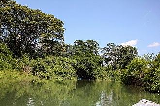 Petexbatún Lake - Petexbatún river near the site of Aguateca
