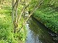 RiverBeal001.jpg