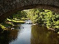 River Lowther under Low Gardens Bridge - geograph.org.uk - 58284.jpg