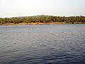 River Parassinikadav.JPG
