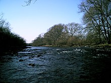 River Swale at Catterick - geograph.org.uk - 1258841.jpg