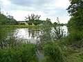 River Wye at How Caple bend 2 - geograph.org.uk - 931771.jpg