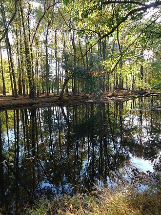 Cranford, New Jersey - Nomahegan park