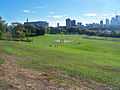 Riverdale Park Toronto.jpg