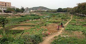 Fenggang, Dongguan - Image: Riverside farming Feng Gang Town Dong Guan