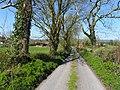 Road at Killarah (geograph 2870446).jpg