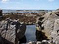 Rock pool with Sgeirean Mora behind. - geograph.org.uk - 452288.jpg