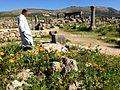 Roman Civilizations in Morocco.jpg