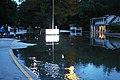 Roman Forest Flooding - 4-18-16 (26488553606).jpg
