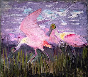 Animal coloration - In Roseate Spoonbills 1905–1909, Abbott Handerson Thayer tried to show that even the bright pink of these conspicuous birds had a cryptic function.