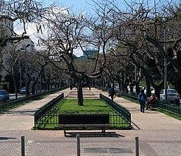 Rothschild Boulevard 2